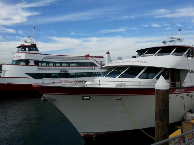 Catalina Classic Cruises Ferry Amp Charter Boat Company